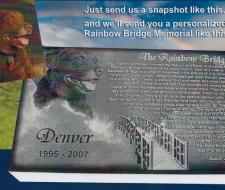 CE Rainbowbridge