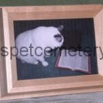 Portrait Frame Pet Urn